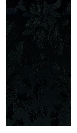 Хризантемы черные-1